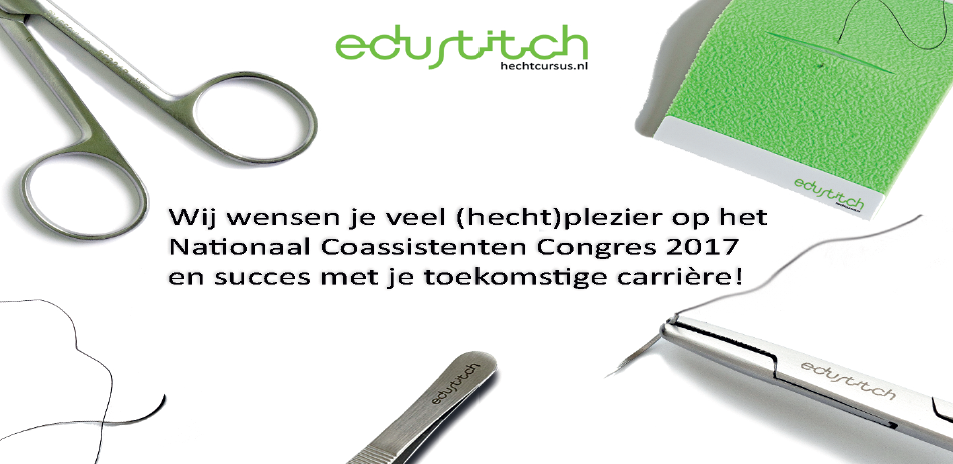 Logo edustitch